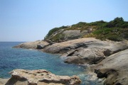 Arenella, Isola del Giglio